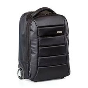 BUSINESS CLASSIC ROLLING CASE NYLON FITS 15.6